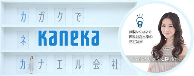 カネカの製品情報 太陽光発電メ...